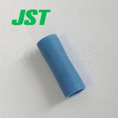 JST Connector FVP-2