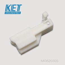 MG620395