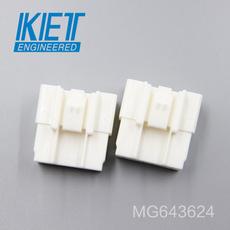 MG643624