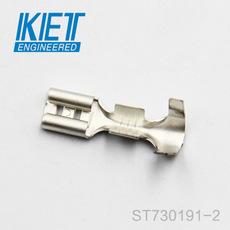 ST730191-2